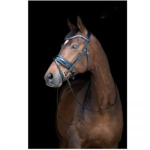 TESS Trens WIDE Bridle Black/Black