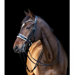 TESS Double Bridle WIDE Black-White