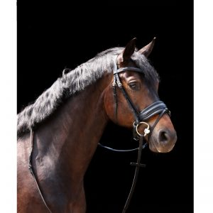 TESS Trens WIDE Bridle Black/Black Matt