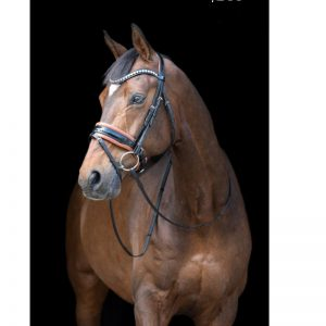 TESS Trens WIDE Bridle Black-Chestnut