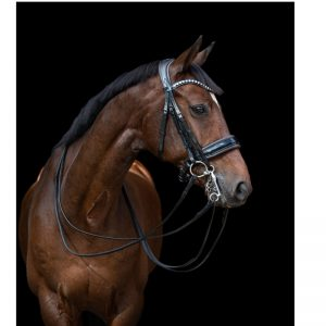 TESS Double Bridle WIDE Black-D.Brown