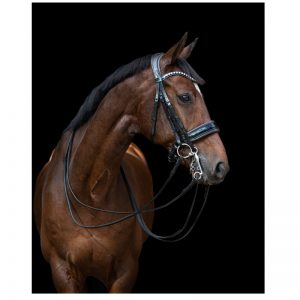 TESS Slim Double Bridle Black-Black